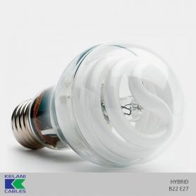 Kelani Hybrid Bulb