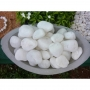 B N S Milky White Pebbles